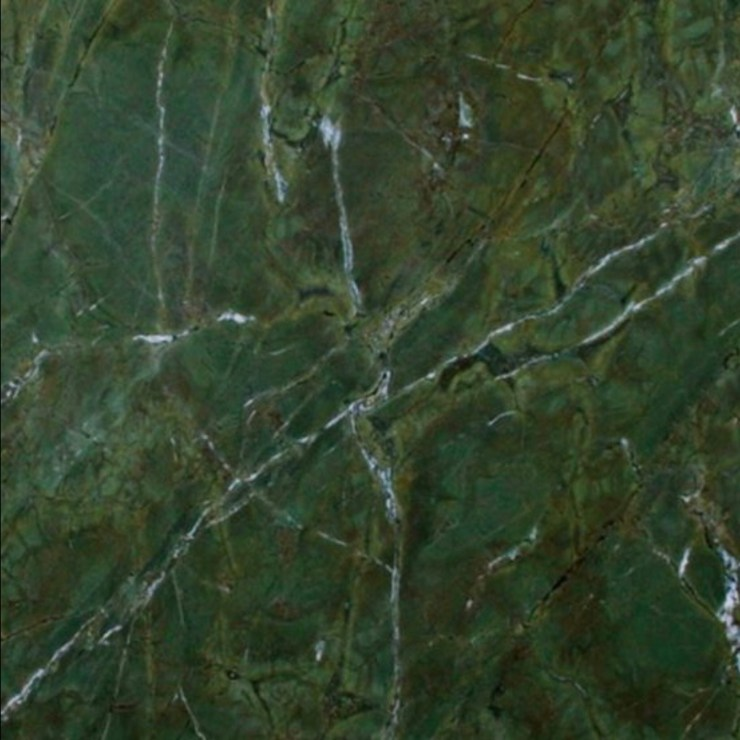 Verde Fantastico | 9 Granites That Just Might Make You Stop Hating on Granite | Interiors for Families | Blog of Kelly Rogers Interiors