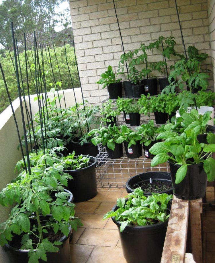 44 Best Balcony Garden Ideas To Make Your Space Beautiful Interiorsherpa