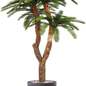 Cycas Baby Drago - plante artificiale, plante lux