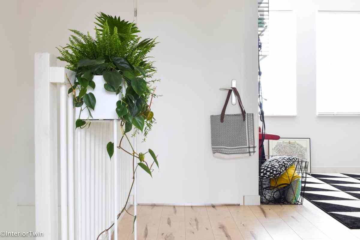 budget plantenbak - InteriorTwin