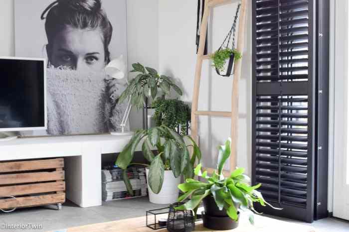 plantenhanger van leer
