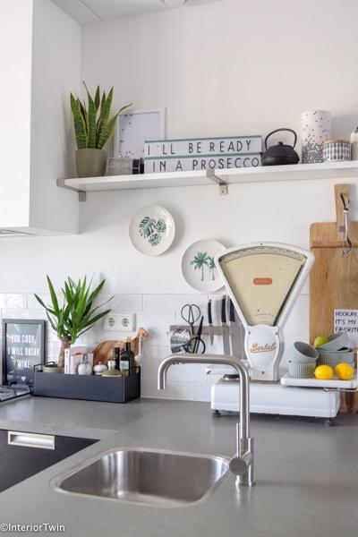 kamerplanten in keuken