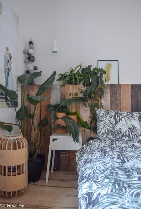 strelitzia slaapkamer