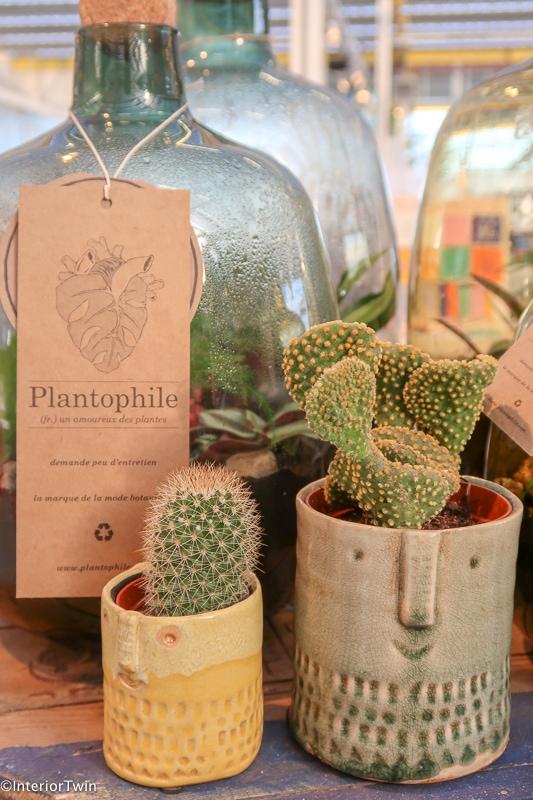 plantophile showup 2