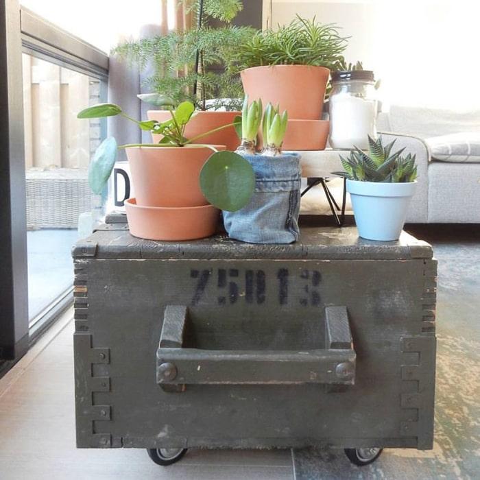 oude legerkist als plantentafel
