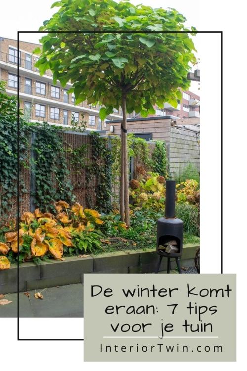 de winter komt eraan: 7 tips voor je tuin
