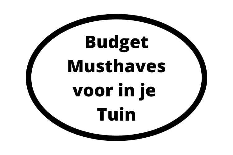 Budget Musthaves voor in je Tuin