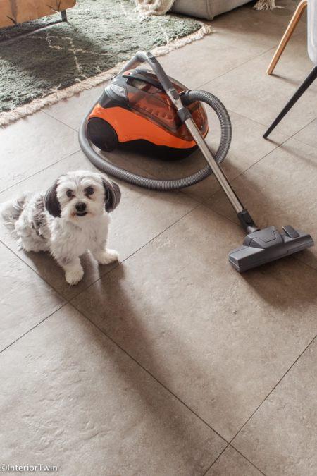 thomas stofzuiger cycloon voor huisdieren katten honden