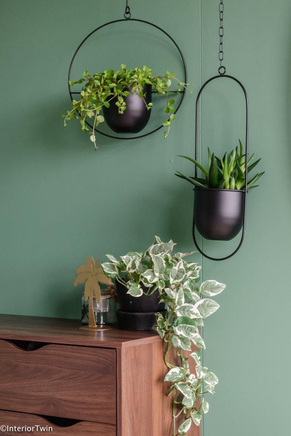 leuke plantenpotten voor hangplanten