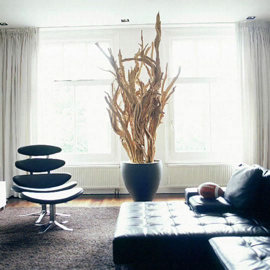 Creative Driftwood Decoration Ideas For Your Home