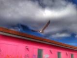Photo: Interiorwise Lisbon