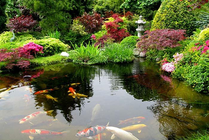 Zen Gardens & Asian Garden Ideas (68 images) - InteriorZine on Backyard Koi Pond Designs  id=81674