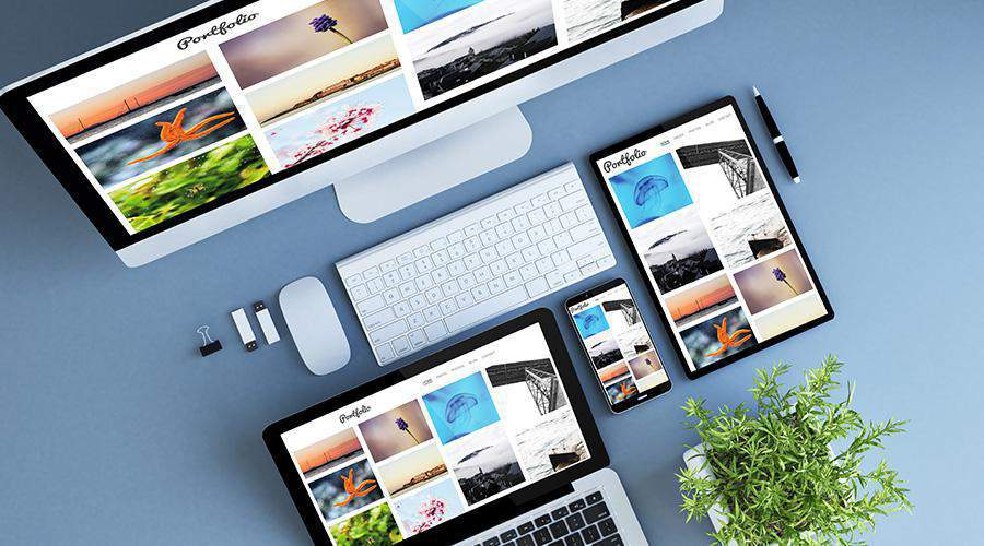 Let us design and build your next website project
