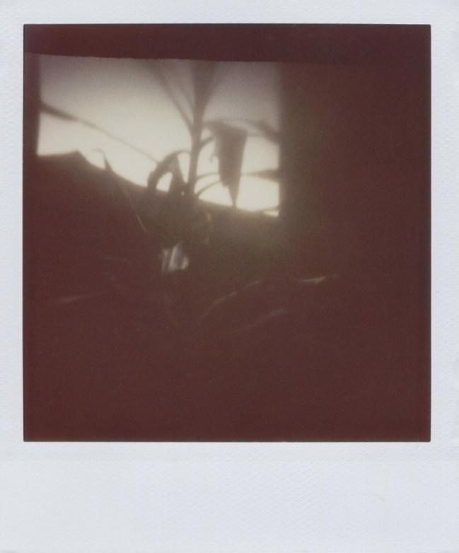 wohnraum_camera-obscura1