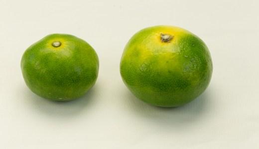 どっちが甘い? 大きい「みかん」と小さい「みかん」 野菜ソムリエがお伝えします。