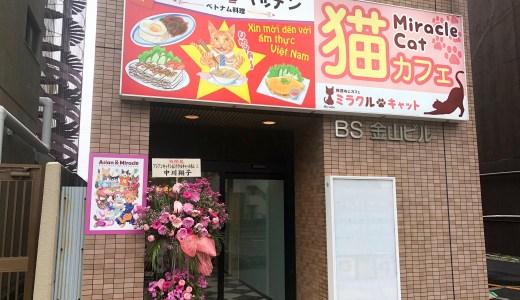 「アジアンキッチンandミラクルキャット」で猫ちゃんを眺めながら本場ベトナム料理を楽しめるお店 in 名古屋・金山