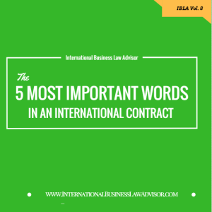 international contract international business attorney 300x300 - The 5 Most Important Words in an International Contract.