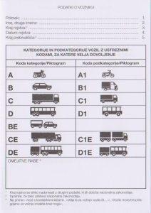 slovenia-idp-2