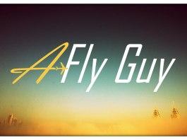 A Fly Guy