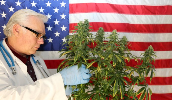 The Trump Administration Wants Your Opinion On The Reclassification Of Cannabis