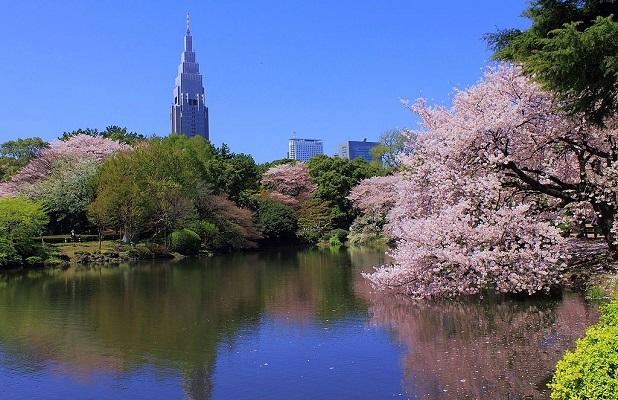Japonés no cobraba entrada a extranjeros por miedo a que le gritaran
