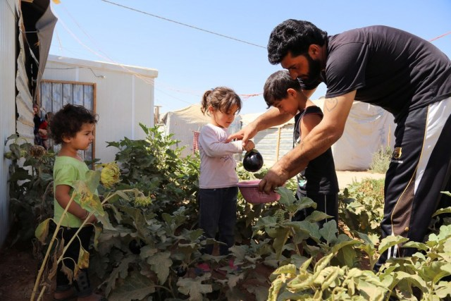Mazen and his children pick vegetables from their garden  Mazen and his two wives and seven children have been living in Zaâatari camp for over two years. A previous car mechanic back in Syria, Mazen's family lived in a large house with a beautiful garden in Daraa. âIâve been gardening ever since I was little. My dad used to love gardening and I learnt from him. You can say I started when I was 16 years old.   I used to come back from work tired and exhausted, and see the desert all around me. I wanted to create a space that made me one step closer to home. Even the smell of air is different when there are plants around. Especially in this place where there is a lot of dust and heat, you need plants. Plants make it a bit cooler here.â
