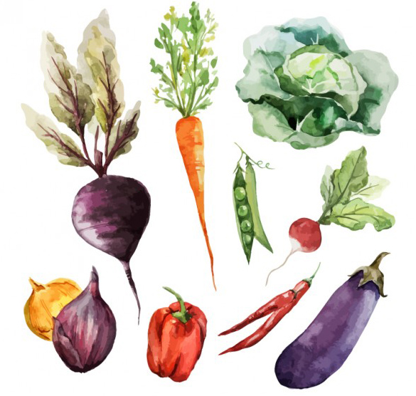 vegetables 2