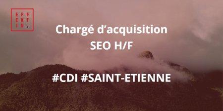 Chargé d'acquisition SEO H/F :  Au sein d'un pure player en très fort développem...