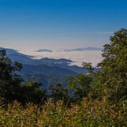 Fog Below Roan Mountain