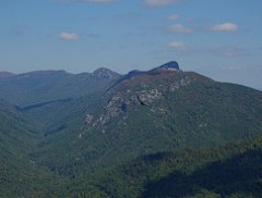 Buzzard Floating High Above Linville Gorge
