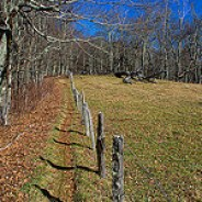 Cataloochee Divide Trail
