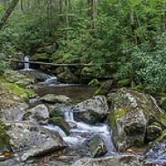 Forney Creek