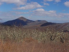 Mt. Pisgah from Fryingpan Mountain