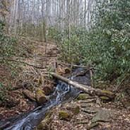 Crossing Pressley Creek