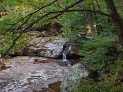 Whiteoak Creek