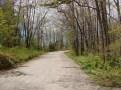 Rim road