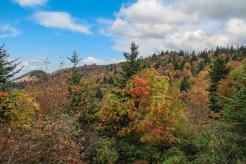 Colorful ridge