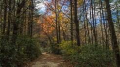 Corn Mill Shoals Trail