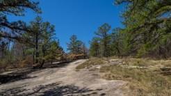 Climbing Cedar Rock
