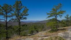 Pisgah Ridge in the distance