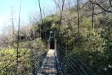 Suspension bridge over falls