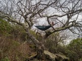 Nice hammock spot