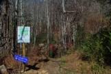 Creekside trailhead
