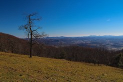 Southeast from Bearwallow Mountain