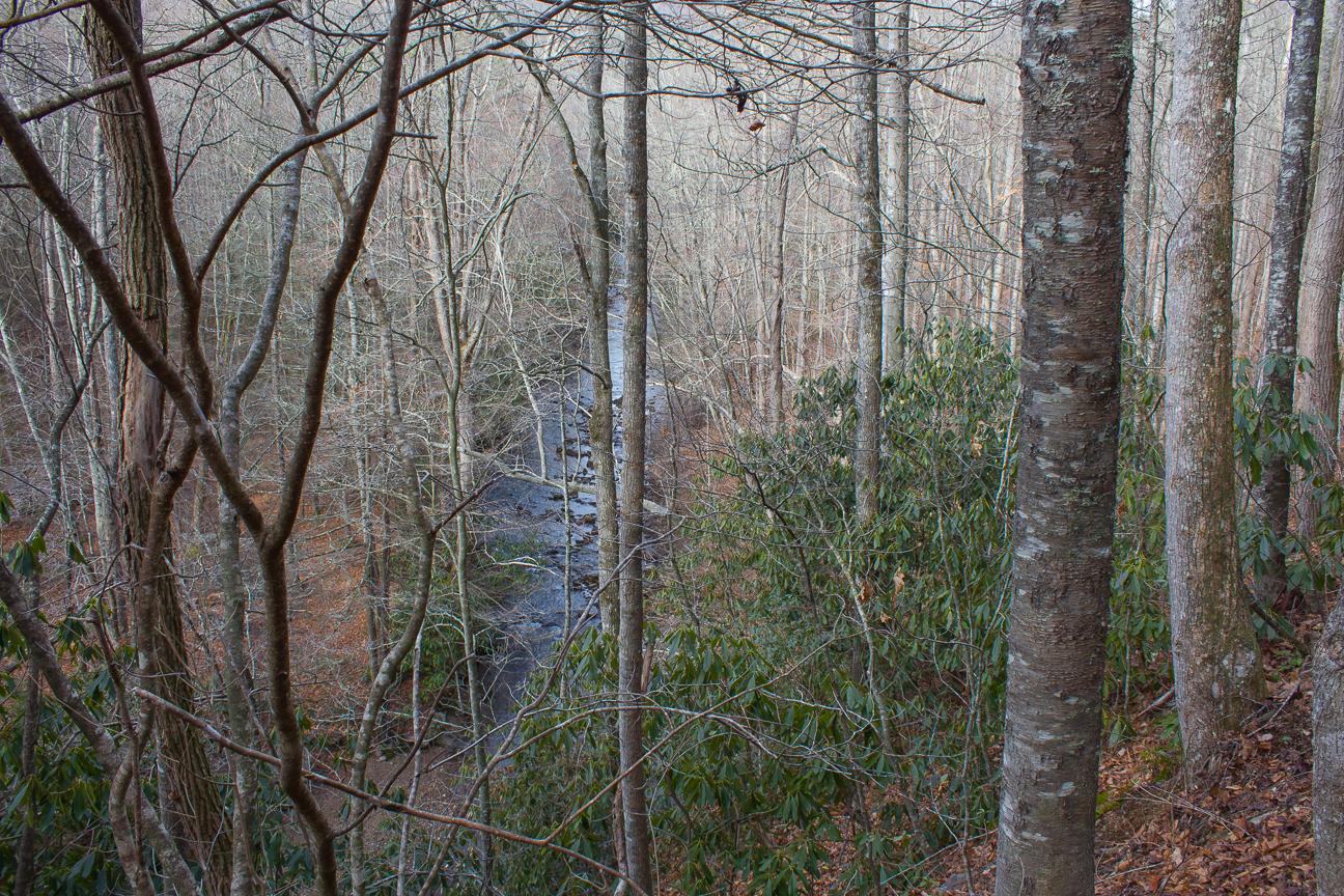 Meanderthals fletcher creek and middle fork trails pisgah meanderthals fletcher creek and middle fork trails pisgah national forest solutioingenieria Images