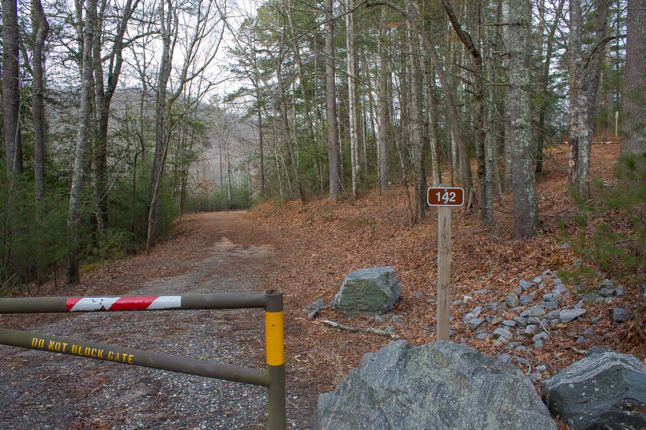 Meanderthals Fletcher Creek And Middle Fork Trails