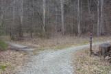 Daniel Ridge Trail split