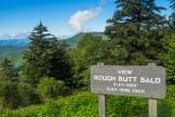 Rough Butt Overlook