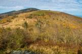 Peaks of Roan Mountain