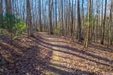 Reasonover Creek Trail